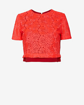 A.L.C. Thompson Floral Lace Crop Top
