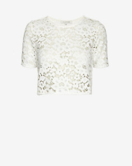 Alexis Lisette Lace Crop Top: White