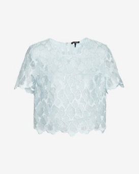 Exclusive for Intermix Scalloped Edge Lace Crop Top