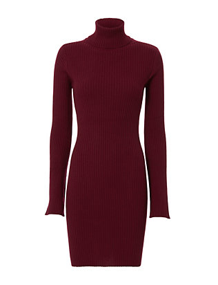 Autumn Cashmere Ribbed Turtleneck Dress