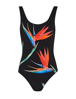 Onia Birds Of Paradise Print Swimsuit